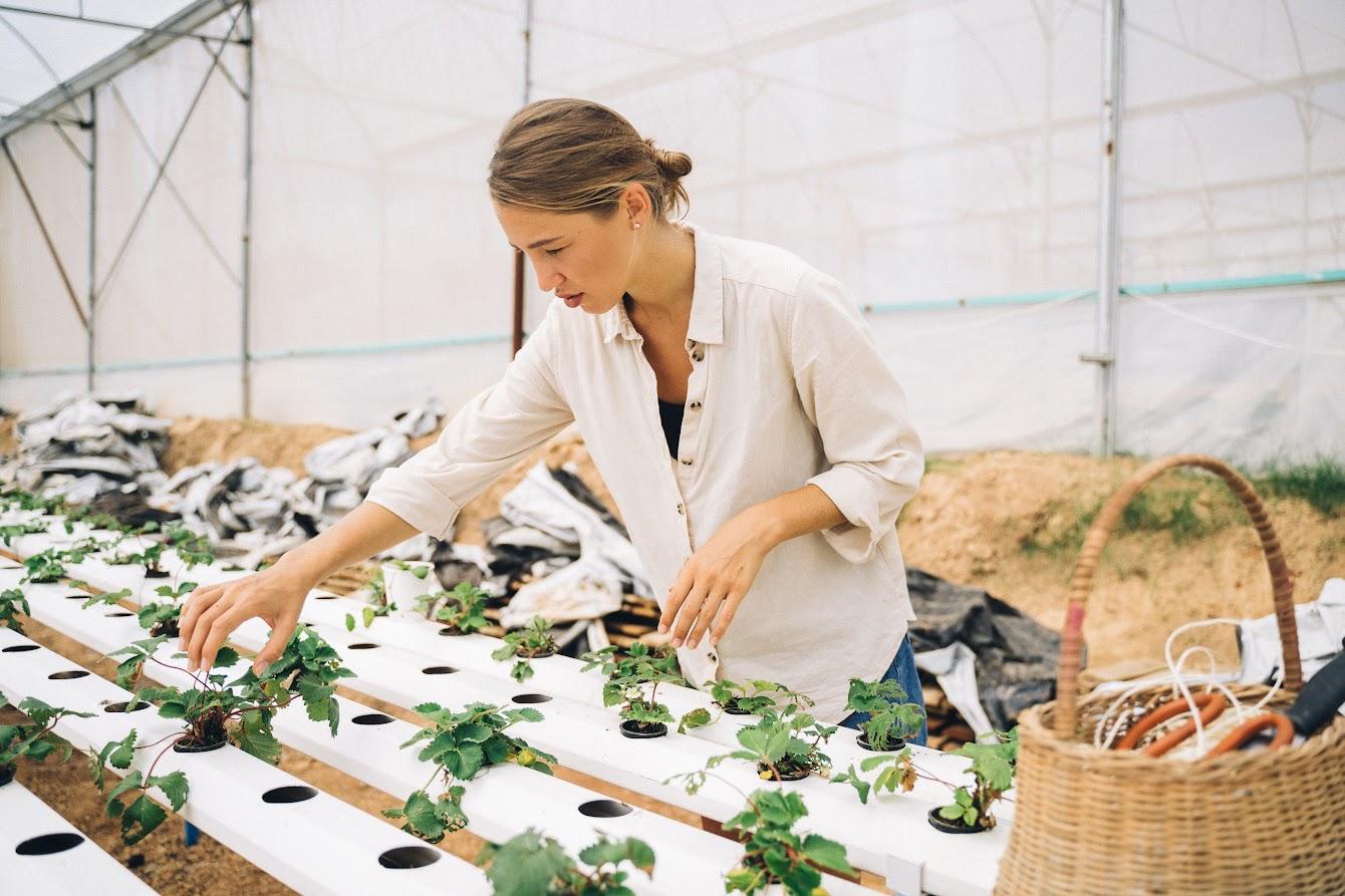 Fondi europei agricoltura - Foto di cottonbro da Pexels