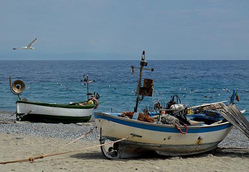 Piano pesca e acquacoltura