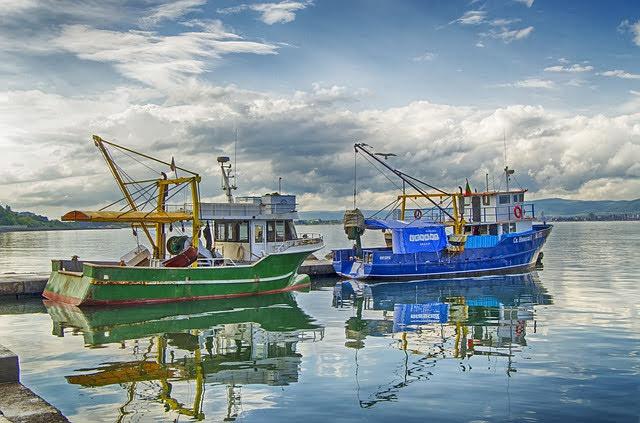 Fondi europei pesca - Foto di Jim Black da Pixabay